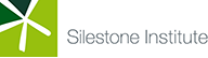 Silestone Institute